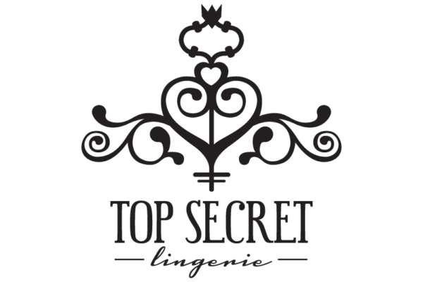 top-secret-lingerie